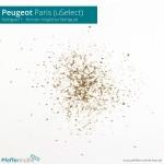 Peugeot uSelect - Mahlgrad 1 (feinster Mahlgrad)