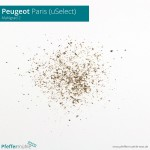 Peugeot uSelect - Mahlgrad 2