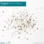 Peugeot uSelect - Mahlgrad 5