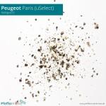 Peugeot uSelect - Mahlgrad 6